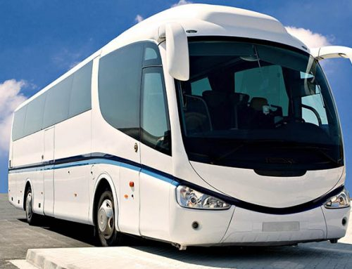 Best Tips For Finding A Bus Hire Cairns Business