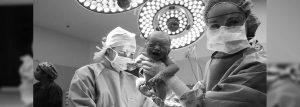 Obstetrician - Sydney | Alana Healthcare